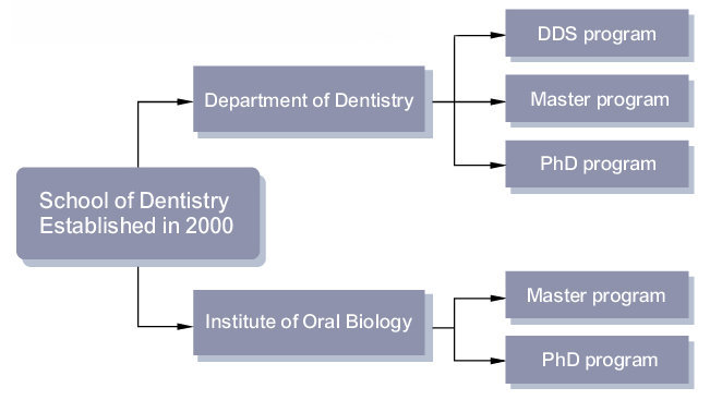 of Dentistry Structure