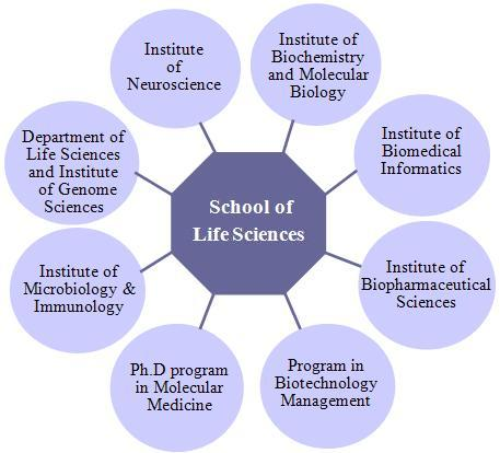 School of Life Sciences Structure